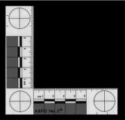 Foto skala